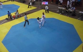 我系学生在2015中国大学生跆拳道锦标赛中喜获佳绩