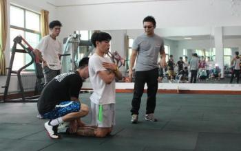 同步训练的正面效果和相互干扰机制---王培林