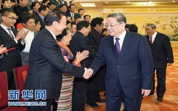 中国西藏文化保护与发展协会第三届会员代表大会召开 俞正声会见与会代表